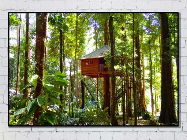 Cabane d'Amazonie, Guyane